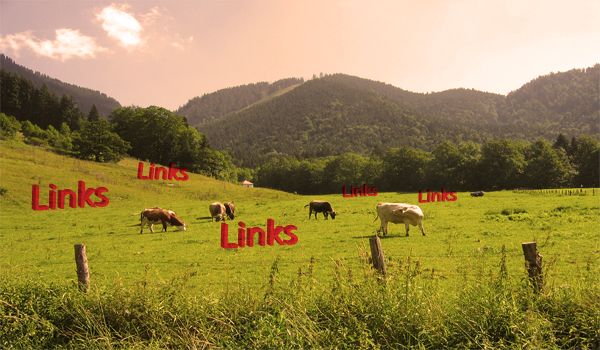 دلیل استفاده از Link Farm چیست